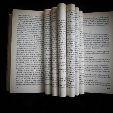 Oczytany poleca: Zapowiedzi książkowe maj i czerwiec 2019